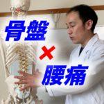 骨盤×腰痛